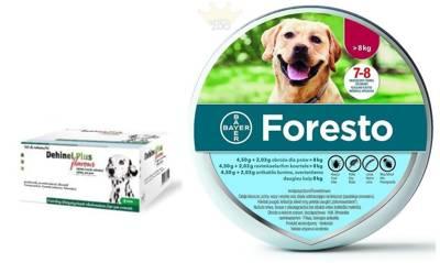 BAYER Foresto Antkaklis šunims virš 8kg + Dehinel Plus Flavour 1 tab.nuo kirmėlių