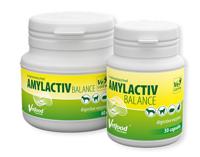 VETFOOD Amylactiv Balance 60 tab.